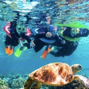 roatan-honduras-snorkeling_pej5K