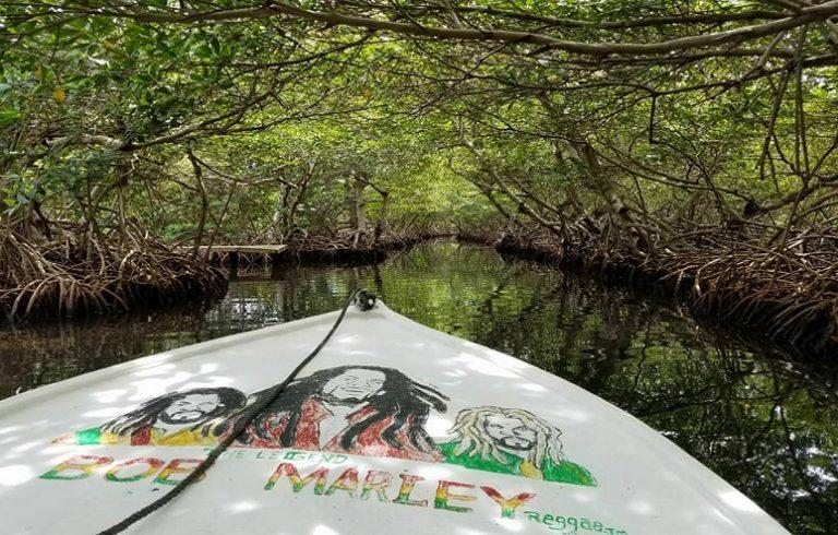 Manawakie Eco Park & Mangrove Tour