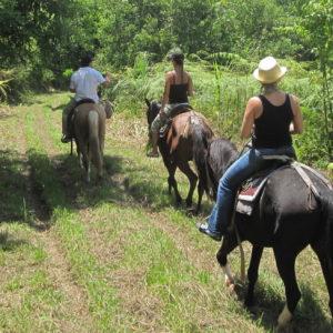 horseback_ride_in_the_cangrejal_valley
